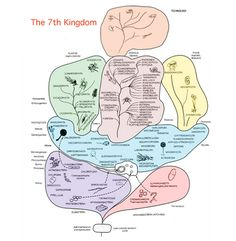 The Technium: The Seventh Kingdom The Seven, Diversity, Biology, Evolution, My Books, How Are You Feeling, Science, Activities, How To Plan