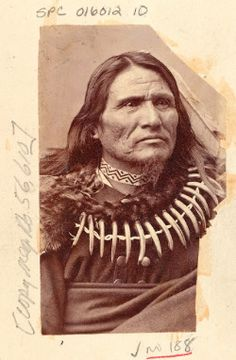 "Portrait of Chief Mo-Chu-Non-Zhin (Standing Bear). John Bourke once noted that the chief ""was a noble looking Indian, tall and commanding in presence,"" whose most striking feature was ""a necklace of claws of the grizzly bear, of which he appeared highly proud."""