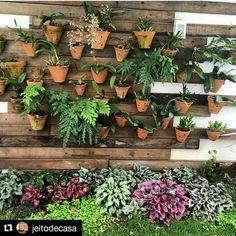 Bom Dia  com este #jardim bonito que achei lá no @jeitodecasa !