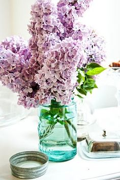 Wish I could have lilacs as my wedding flower...they have special meaning to me and would be such a wonderful addition to my big day <3