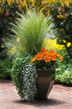 Garden-Pot-using-flowers-and-grasses.png 461×697 pixels