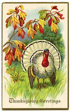 Vintage Thanksgiving Clip Art - White Turkey - The Graphics Fairy.....will be cute for placard or napkin ring or card. Thanksgiving Decorations, Happy Thanksgiving, Thanksgiving Graphics, Thanksgiving Blessings, Vintage Thanksgiving, Thanksgiving Traditions, Vintage Fall, Thanksgiving Turkey, Vintage Holiday