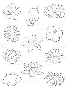 Set of flowers. Vector illustration. royalty-free stock vector art