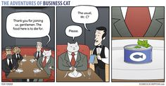 The Adventures Of Business Cat