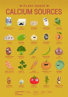 Vegan Calcium Sources, who needs dairy? You can find anything you need on a plan… Vegan Calcium Sources, who needs dairy? You can find anything you need on a plant based diet. Plant Based Diet, Plant Based Recipes, Plant Based Protein, Vegan Calcium Sources, Calcium Rich Foods, Fiber Rich Foods, Calcium Diet, Healthy Snacks, Healthy Eating