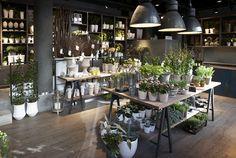 Regeringsgatans blommor, stockholm - koncept blommor i 2019 flower shop int Shop Interior Design, Retail Design, Store Design, Florist Shop Interior, Flower Shop Interiors, Flower Shop Design, Flower Bar, Flower Shops, Flower Studio