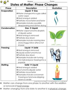 Matter: Evaporation, Condensation, Melting, and Freezing Study Guide Outline - Phase Changes - King Virtue's Classroom Starting your unit on Matter? Help your students get off to a great start with this simple study guide outline. This is a great tool tha Matter Worksheets, Science Worksheets, Science Resources, Science Lessons, Science Activities, Science Experiments, Science Ideas, Science Notes, Science Notebooks