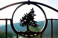 Big Cedar Little Details