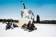 Snowmobiling in Wawa for a photo op with the famous Wawa Goose Monument. Outdoor Adventures, Fighter Jets, Aircraft, Country, Aviation, Rural Area, Plane, Airplanes, Planes