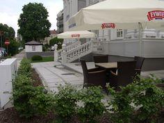 Gardening / landscaping.  Willa Hueta, Kielce, ul Słowackiego po renowacji. Zieleń Firma Green Point Kielce Ogrody