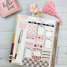 planningfancy: I have been in love with this @glamplanner kit for a long time! The pink and rose gold are so perfect together and don't get me started on the adorable rose gold fox from @plannerglamgirl !!! Happy Wednesday friends!!