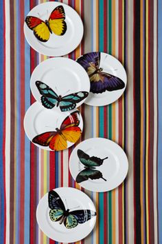 Bone China Butterfly Plates,Re-foundobjects Plates And Bowls, Plates On Wall, China Plates, Side Plates, Pottery Painting, Ceramic Painting, Mad About The House, Painted Plates, China Painting