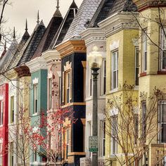 Not really travel but beautiful depiction of DC's colorful rowhouses