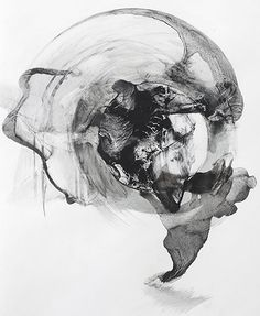 """Patti Jordan """"Hang-Tail"""" (Biconical 015)  2014 Ink, Graphite & Rubber Latex on Paper 26in x 28in"""