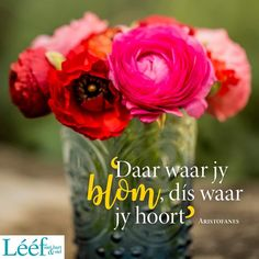 Afrikaans Quotes, Daily Motivation, Note To Self, True Words, Positive Quotes, Me Quotes, Verses, Blessed, Inspirational Quotes