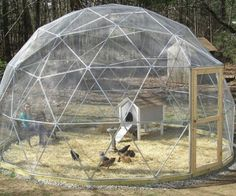How To Build A Geodesic Chicken Dome