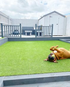 Pet approved - All of our Artificial Grass Ranges are 100% pet friendly! 🐶 ✅ No digging ✅ Drainage holes ✅ Toxin free ✅ Extended play time 🏷️ Bordeaux Artificial Grass 📷 littleavonhouse 🛒 Order your Free Samples #GrassDirect #ArtificialGrass #ArtificialTurf #ArtificialLawn #ImitationGrass #FakeGrass #SyntheticTurf #SyntheticGrass #Grass #Turf #Astroturf #Garden #Gardening #GardenDesign #HomeDesign #FamilyGarden #LuxuryGarden #GardenEnvy #GardenGoals #Landscapes #GardenProject Cozy Grey Living Room, Garden Projects, Garden Ideas, Garden Design, House Design, Fake Grass, Astro Turf, Artificial Turf, Family Garden