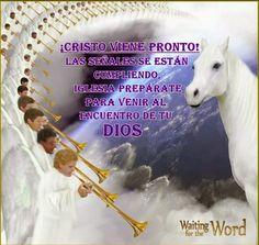 El Reino de Dios: CRISTO VIENE YA, PREPÁRATE PARA VENIR A SU ENCUENT...