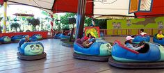 """Tuck and Roll's Drive 'Em Buggies is a bumper car ride that is part of """"a bug's land,"""" a child-oriented section of Disney California Adventure park. There is no similar area at Walt Disney World, nor is there a bumper car ride."""