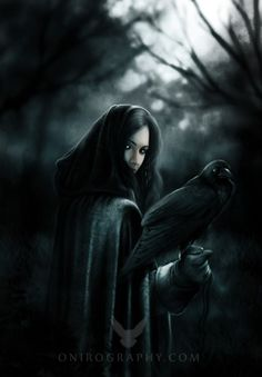 Issa and her raven in The Prophecies of Zanufey #Raven #Fantasy #FantasyBook