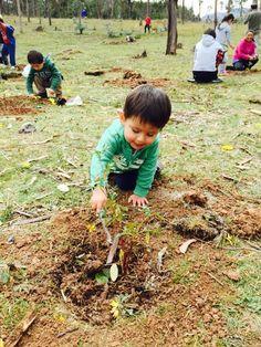 22 meses.. Plantando su primer árbol