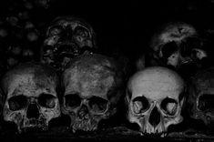 Chroniken des Blutes und Absinth