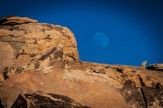 Moonrise - Johnson Valley, CA, USA