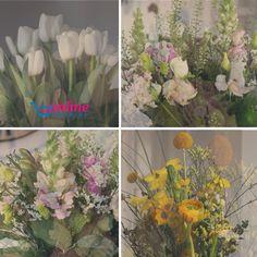 Cheap Flowers Online, Best Online Flowers, Online Flower Shop, Order Flowers Online, Cheap Flower Delivery, Online Flower Delivery, Same Day Flower Delivery, Flower Service, Orchid Arrangements