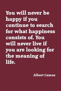 Camus has a point. At some point you need to live your life instead of look for a meaning in it. We only get one go around. Don't waste it.