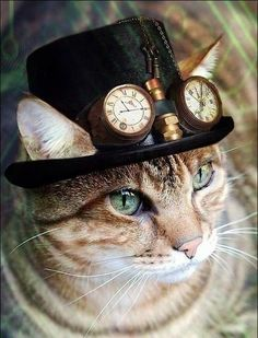 cat and hat with clock