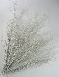 LOT of 40 White  Sparkle Huckleberry Branches - Winter Wonderland Wedding Decor