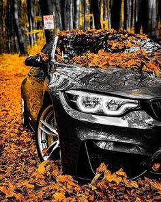 Beautiful Black-out BMW ready to cruise with this nice car? - - Beautiful Black-out BMW ready to cruise with this nice car? Beautiful … – Beautiful Black-out BMW ready to cruise with this nice car? Luxury Sports Cars, Top Luxury Cars, Sport Cars, Mercedes Auto, Bmw Autos, Lamborghini Cars, Audi Cars, Ferrari Laferrari, Lamborghini Gallardo