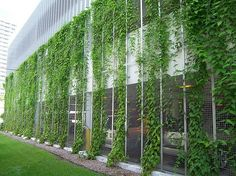 50 Green wall Design Inspiration is a part of our collection for design inspiration series.Green wall Design Inspiration is an inspirational series Green Architecture, Landscape Architecture, Landscape Design, Garden Design, Pergola, Green Facade, Garden Screening, Walled Garden, Green Building
