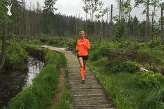 Wenn du mit dem Laufen beginnst, bist du natürlich auf der Suche nach einem guten Trainingsplan für Laufanfänger und guten Tipps für dein Training.