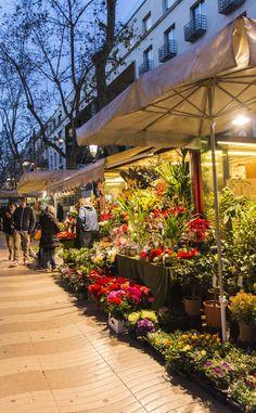 Floristes en les Rambles  Barcelona