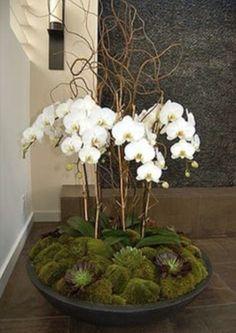 Orchid diy feature flower arrangement                                                                                                                                                                                 More