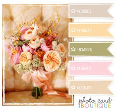 Category : Color Crush Palette | Photographer Templates by Photo Card Boutique - Page 4