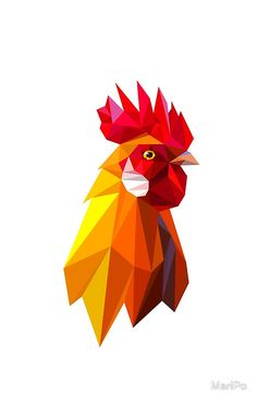 Head of Red fiery rooster