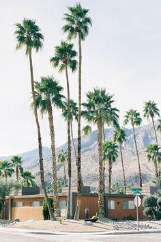 california dreaming.