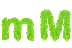 Alfabeto inglés hecho de hojas verdes — Imagen de stock Cactus Plants, Alphabet, Stock Photos, Green, Jewelry, English Alphabet, Green Leaves, So Done, Jewels
