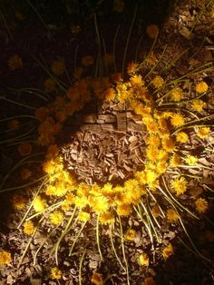 sylvain-meyer-photography-gessato-gblog-17