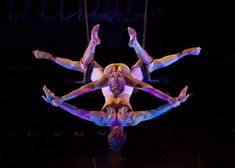 Image result for duo trapeze