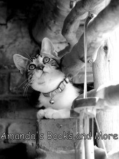 Black and White photo of our #kitten #photography