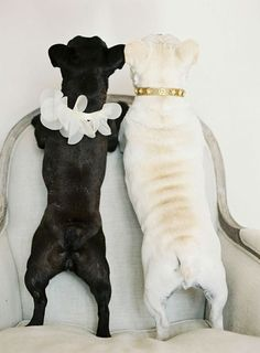 Black & White Together