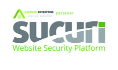 Protectie website profesionala