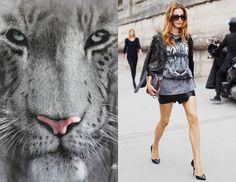 Wprost z bloga- stylizacja z tygrysem, mamy tego więcej na geekcode.pl