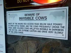 Beware of invisible cows
