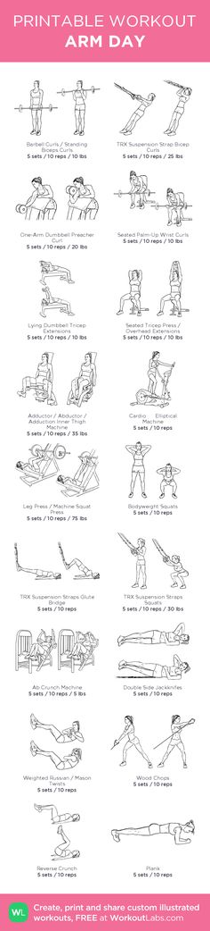 ARM DAY – illustrated exercise plan created at WorkoutLabs.com • Click for…