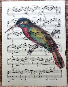 Items similar to Blue Necked Jacamar Bird Art Print on Antique Music Book Page on Etsy Music Drawings, Music Artwork, Sheet Music Art, Drawing Sheet, Book Page Art, Collage Art Mixed Media, Vintage Maps, Tree Art, Bird Art