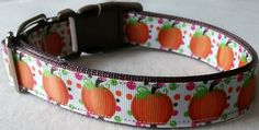 Pumpkins Dog Collar (large) (14.00 USD) by dlkompare